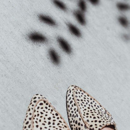 Shop leopard print clothes and shoes